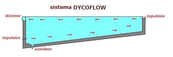 sistema dycoflow